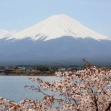 [Virtual Tour] Mt. Fuji & Hakone Highlights Tour led by Local Expert with National Guiding License (1st Session)