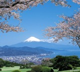 Japan Rail PASS 7days $278.00 Now!