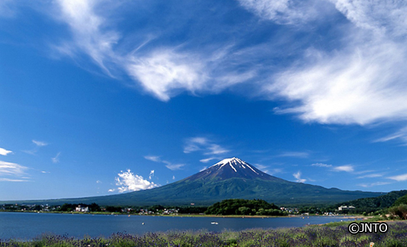 how to go to mt fuji from tokyo blog